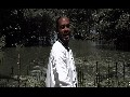/4f4edcb4ce-zee-vibe-official-video