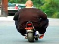 http://www.welaf.com/13264,fat-man-small-scooter.html