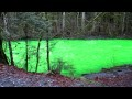 /437d47fdd0-goldstreams-green-river