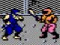 /0e1addd07a-ninja-gaiden-enhanced