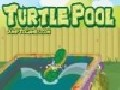 /220e3efa88-turtle-pool