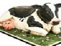 /d90f220c12-life-sized-cow-cakes