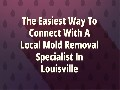 /553e1fc489-mold-removal-in-louisville-ky