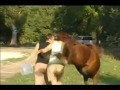 /ddaf4ecdfb-woman-was-kicked-by-a-horse