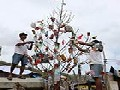 /bc42a9105f-christmas-tree-made-of-trash